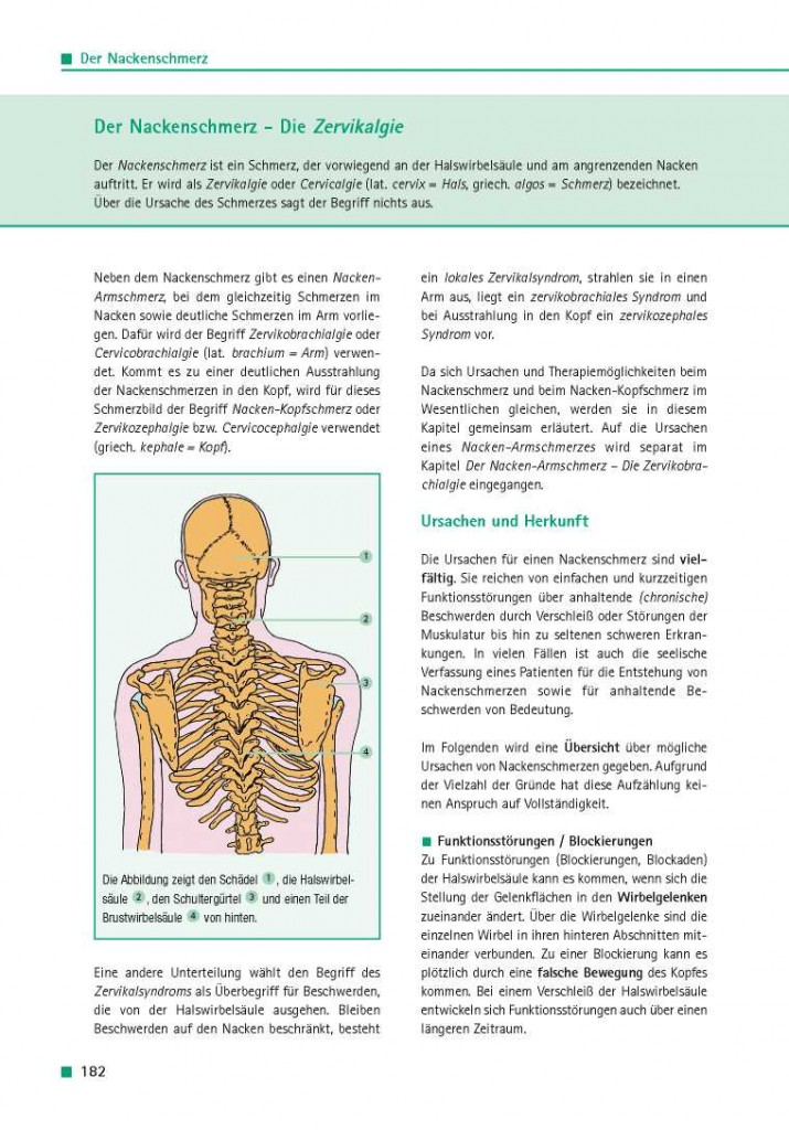 Der Nackenschmerz - Die Zervikalgie