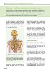 Erkrankungen und Beschwerden an Brustwirbelsäule und Brustkorb
