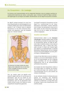 Der Kreuzschmerz – Die Lumbalgie