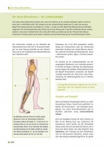 Der Kreuz-Beinschmerz – Die Lumboischialgie