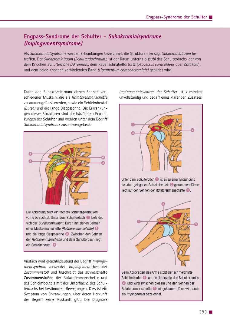 Orthopädie für Patienten | Engpass-Syndrome der Schulter ...